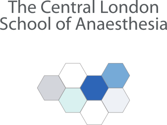 Central London School Logo